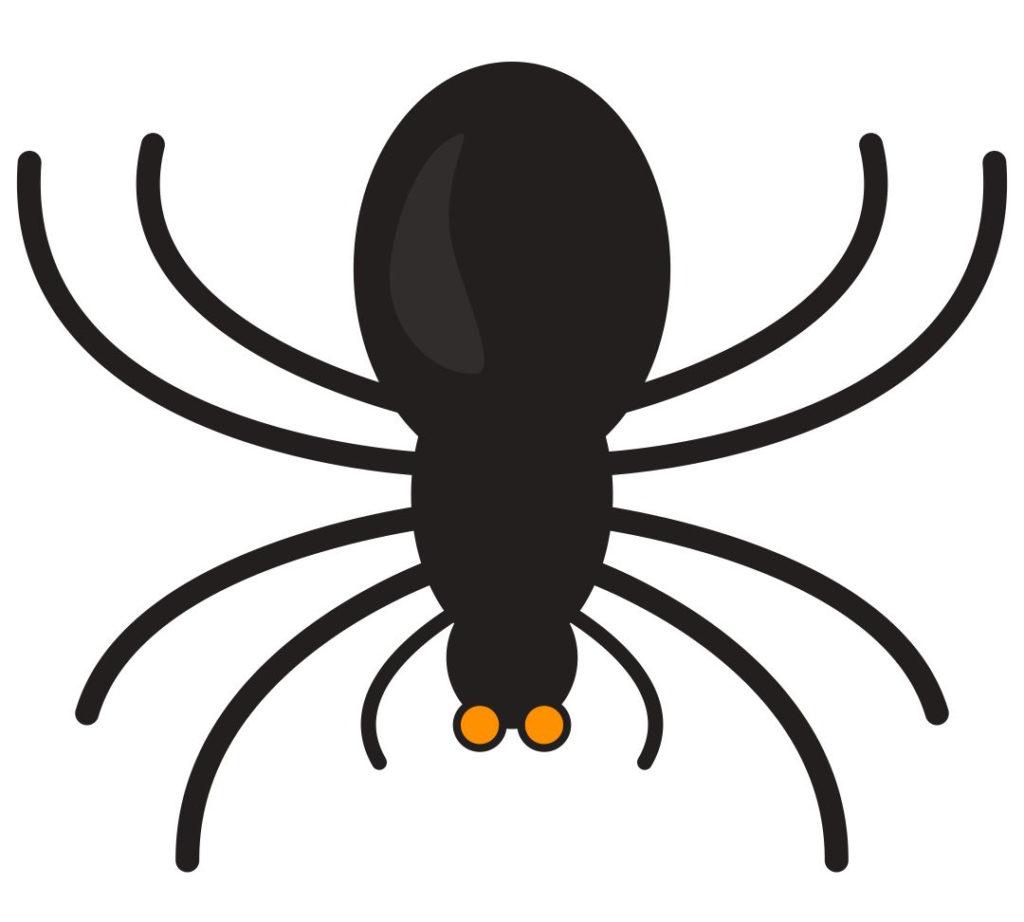 6 Best Printable Spider Template Printablee