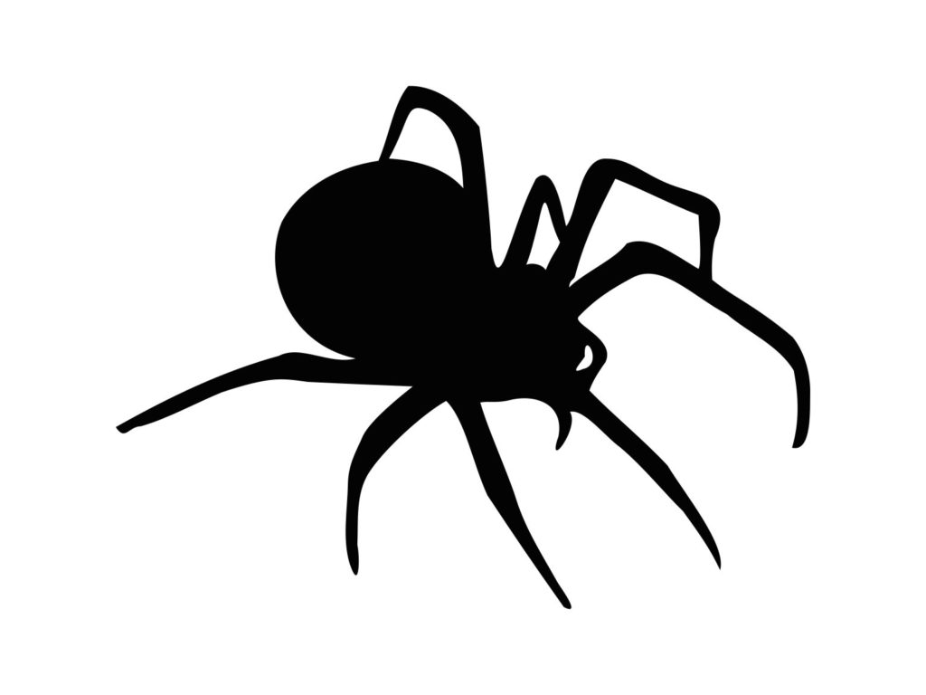 Black Spider Svg Cut File Printable Spider Svg Halloween