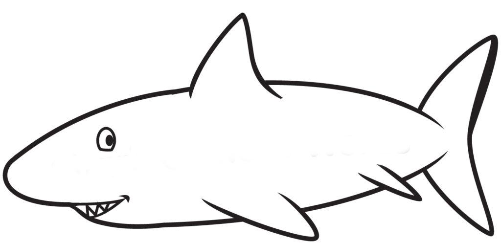 Camera Word Shark Rotation Activity Get Reading Right