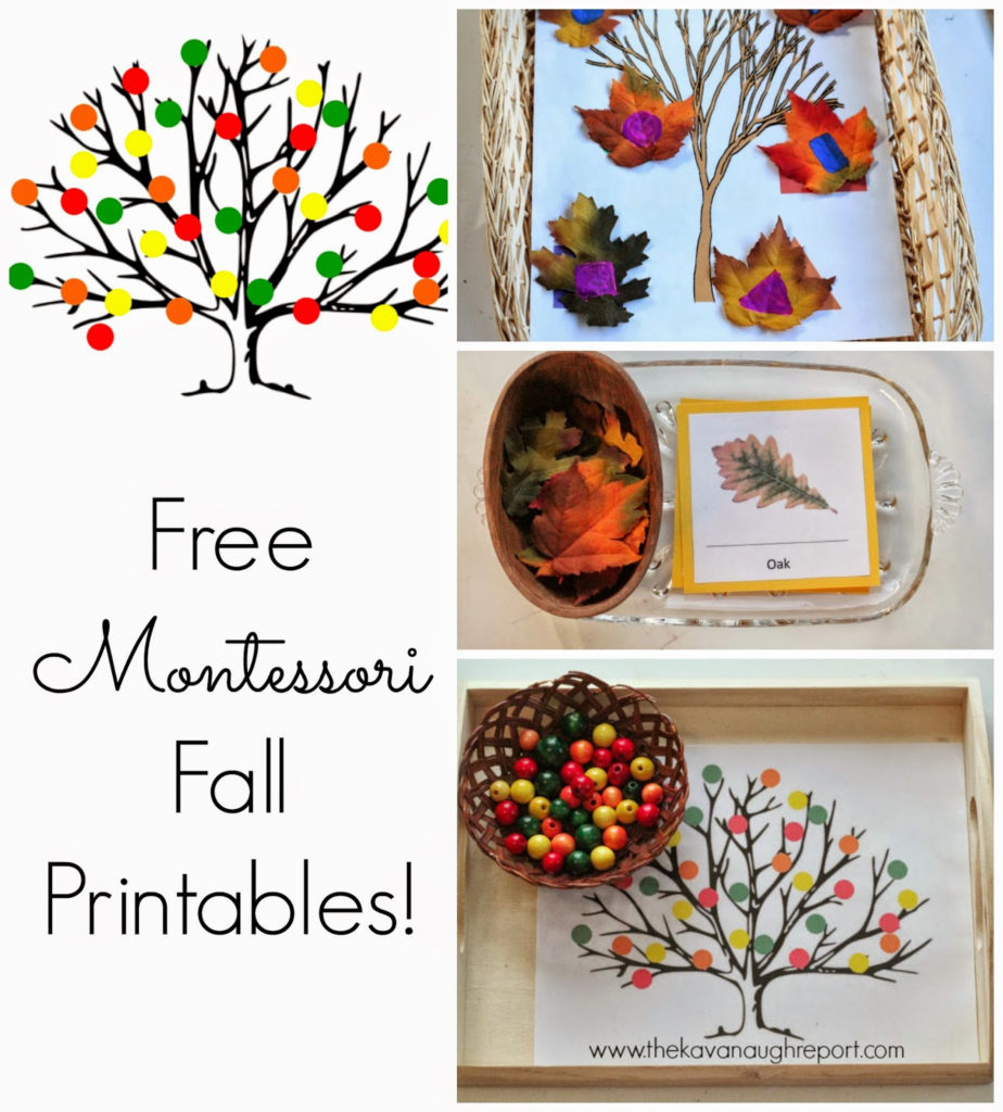 Free Montessori Inspired Fall Printables
