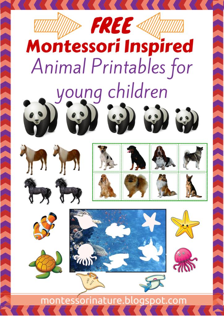 Free Pre Reading Printables Montessori Nature