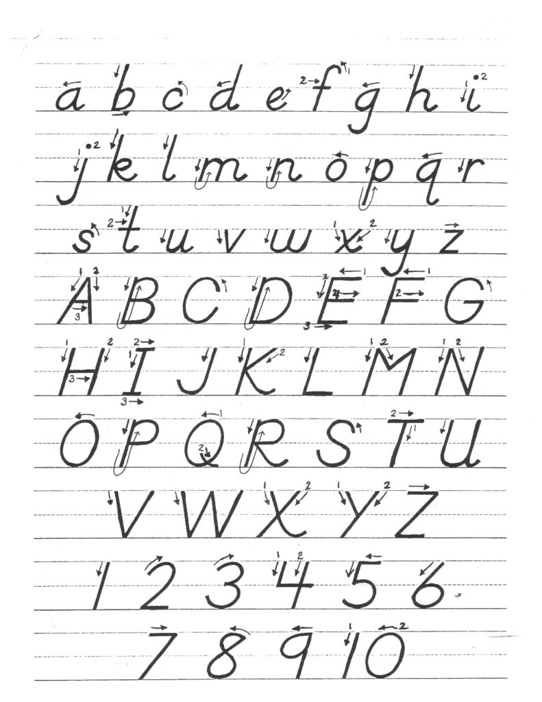 Free Printable D Nealian Cursive Handwriting Worksheets