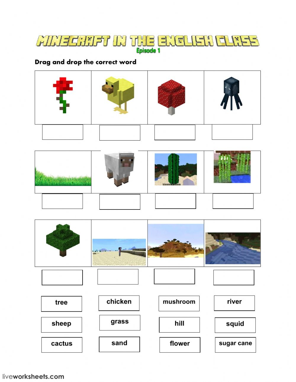 Minecraft Worksheets